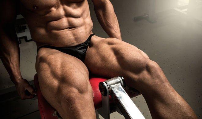 Novo músculo descoberto quadríceps TVI