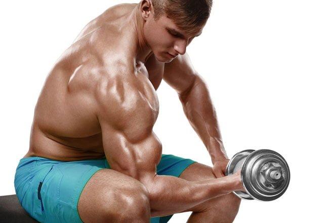 Treino de Bíceps