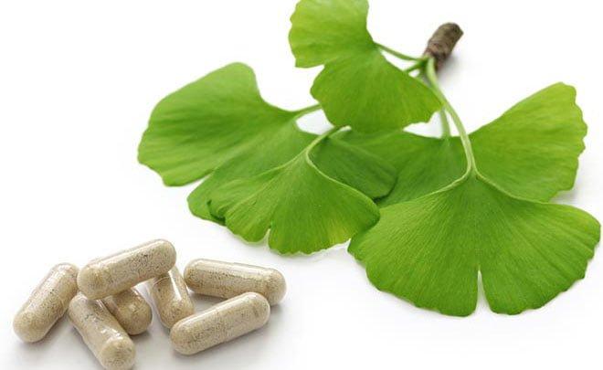 Ginkgo biloba - Para que serve e benefícios