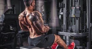 Divisão de treinamento na musculação