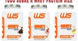 whey protein size