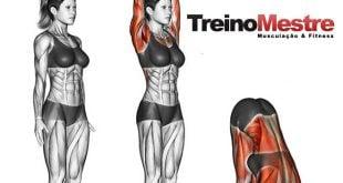 flexibilidade e hipertrofia treino exercicios