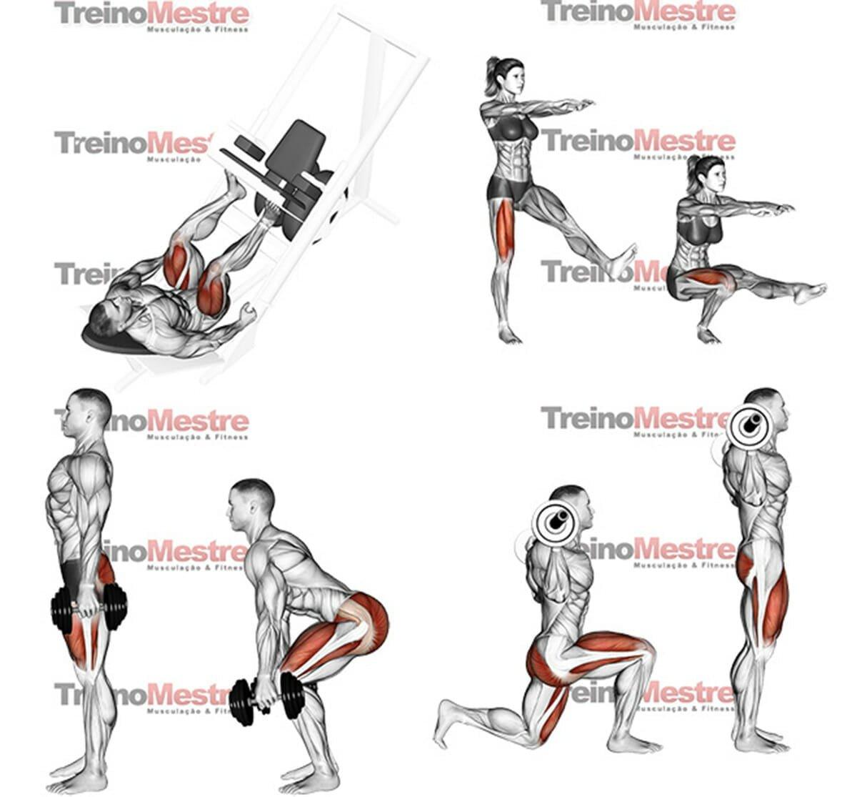 8 maneiras de intensificar seu treino de pernas e ter for Exercicio para interno de coxa