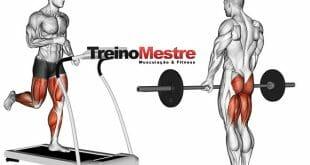 aerobico-atrapalha-musculacao-hipertrofia