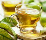 Carqueja – Para que serve, benefícios do chá e contraindicações