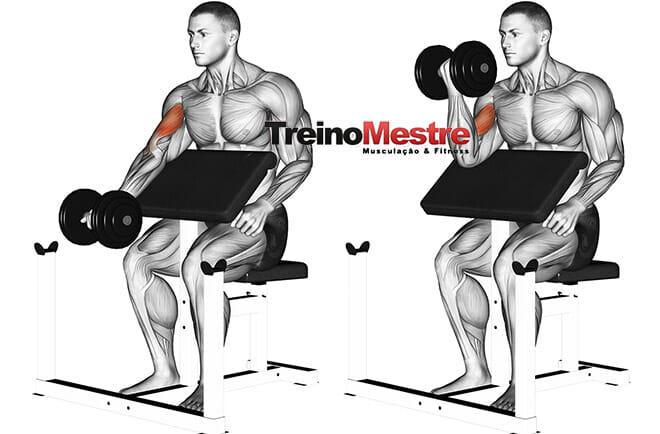 Quanto peso usar nos exercícios de musculação