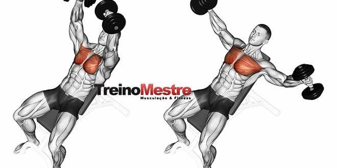 5 elementos fundamentais em um treino de musculação que funcionam!