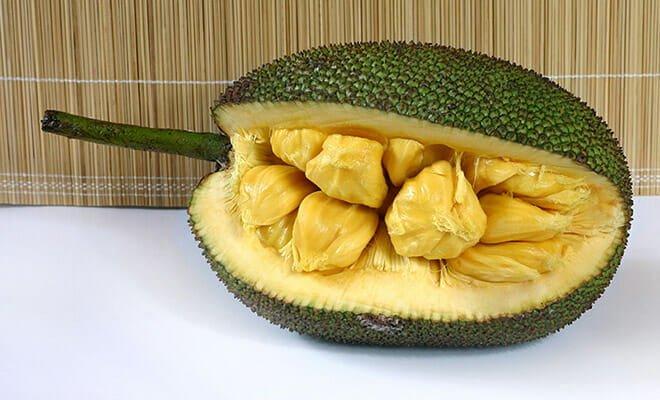 jaca fruta