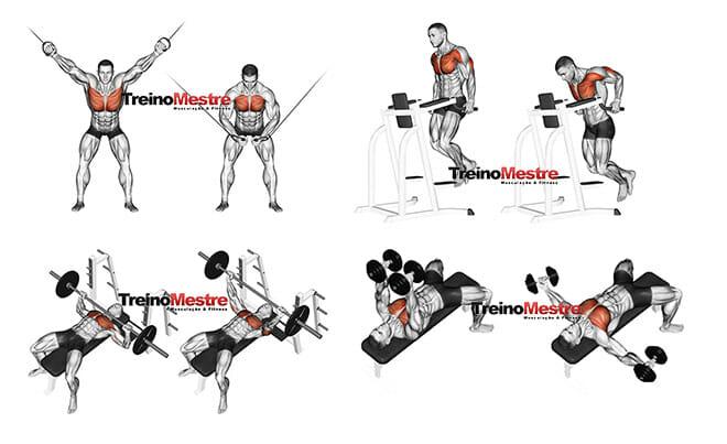 Treino para peito melhores exercícios