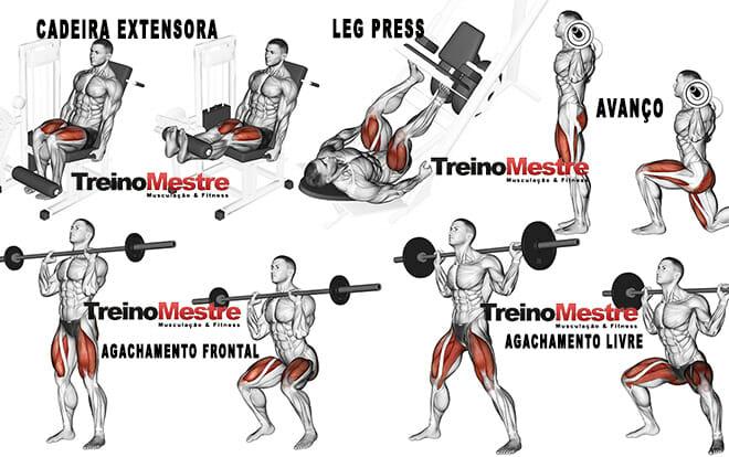Quadríceps, os 6 melhores exercícios para seu treino