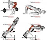 Como fortalecer a lombar (exercícios com e sem aparelhos)