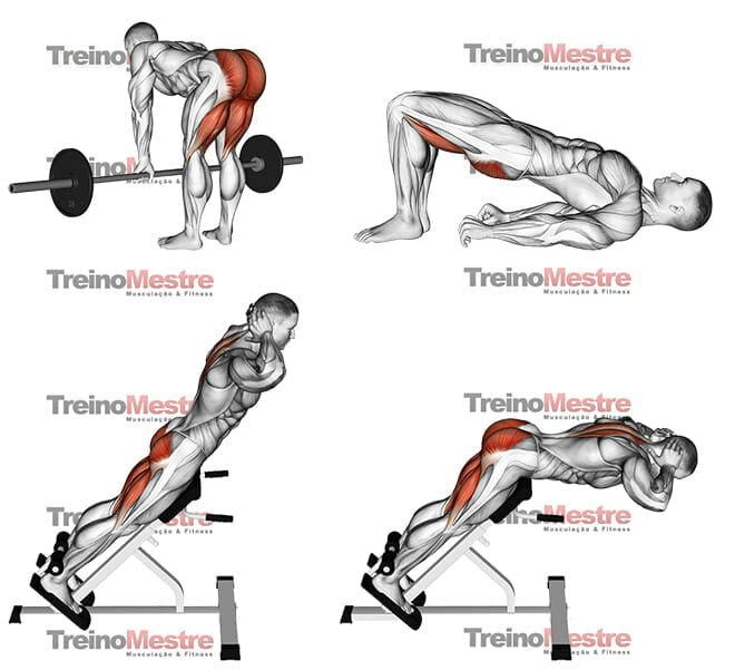Exercícios para fortalecer a lombar - treinos