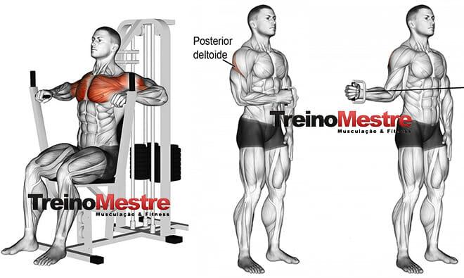 5 exercícios para o treino musculação de um iniciante
