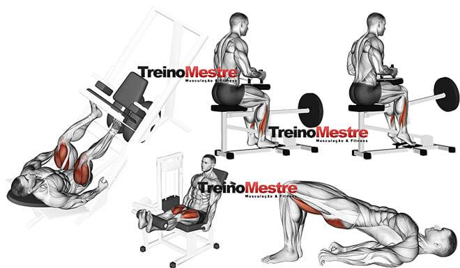 Músculos estabilizadores dos membros inferiores