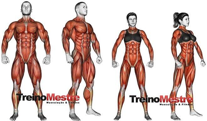 Descanso na musculação para ter muito mais resultados