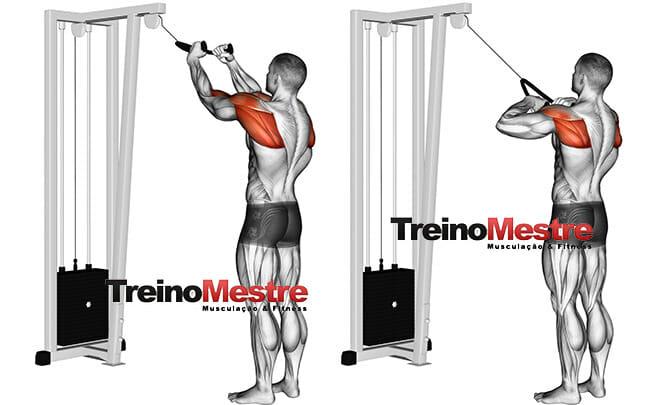 Como treinar músculos que não estão crescendo