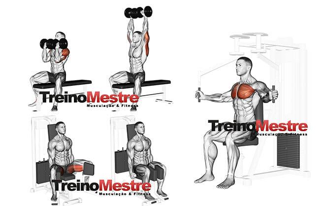 Divisão de treino musculação