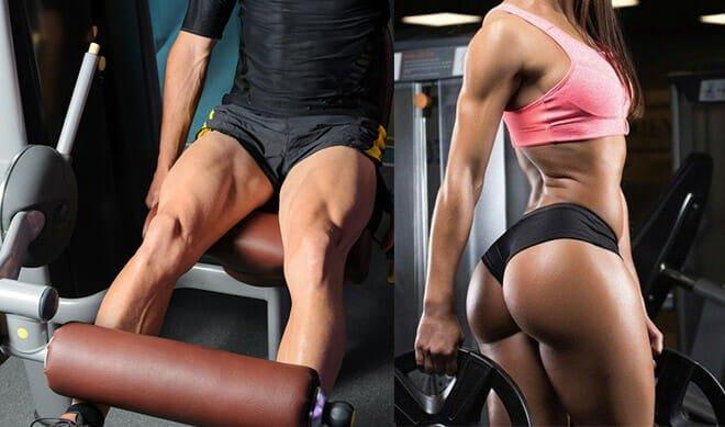 Como engrossar as pernas?