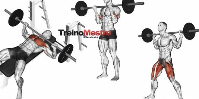 Exercícios de força, aspectos práticos para seu treino!