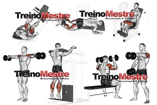 Conhecido Treino de pernas e ombros para iniciantes, dicas práticas - Treino  XF41