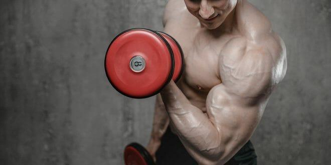 6 dicas de como ajustar as variáveis do treino para otimizar os resultados